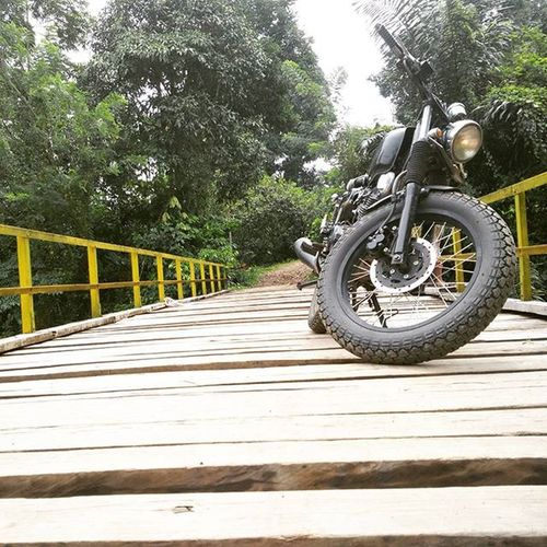 Out of the wood Japstyle Streettracker  Scrambler Adventure Vscocam Vscoaceh