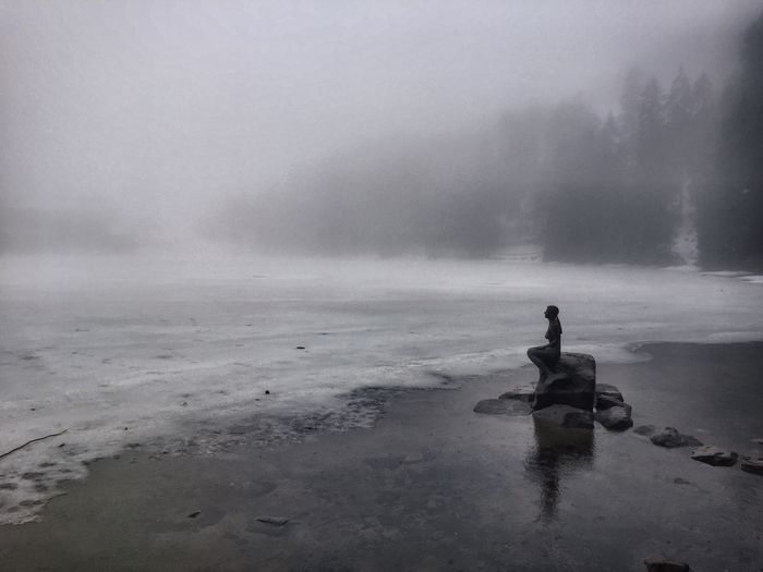 Mumelsee Wandern Schwarzwald Water Calm