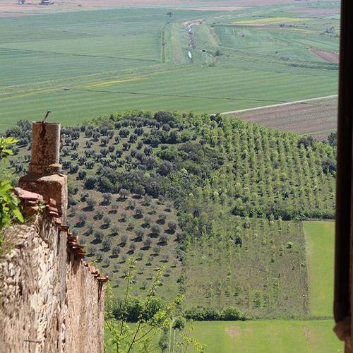 Giuncarico (GR) Maremma Toscana Toskana Bellaitalia  Giuncarico