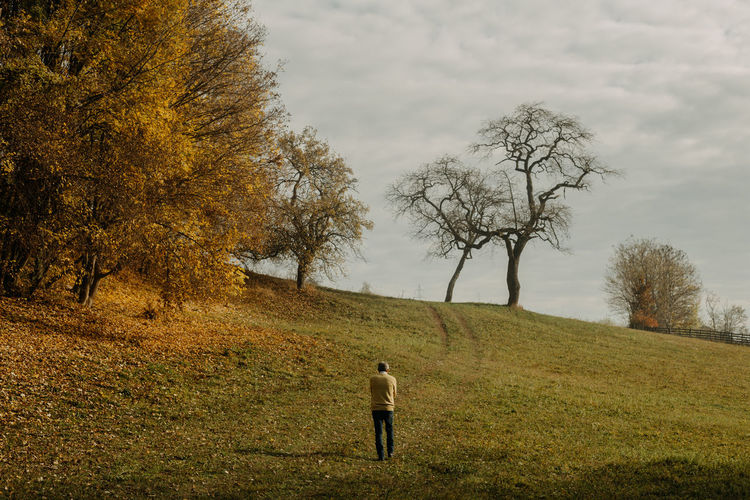 Rear view of man walking on field during autumn