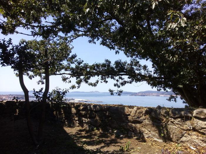 o Castro Islas Cies El Castro Contrasteffect Tree Water Sea Beach Sand Silhouette Sky Horizon Over Water Landscape