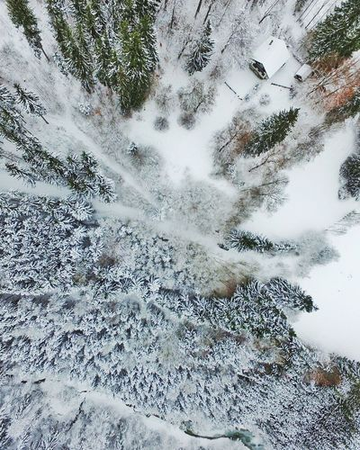 Allgäu, Germany Dji Multicopter Germany Alps Allgaeu Bavaria Snowy Trees Dronephotography Droneshot Birds Perspective Mountain View Winter Winter Wonderland Winter Trees Backgrounds Day No People Full Frame Nature Outdoors Water Tree