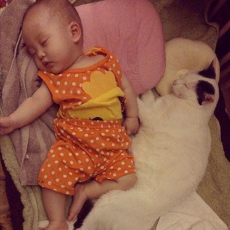 床伴!! 箴箴 Baby Kid Neko CATS mylove