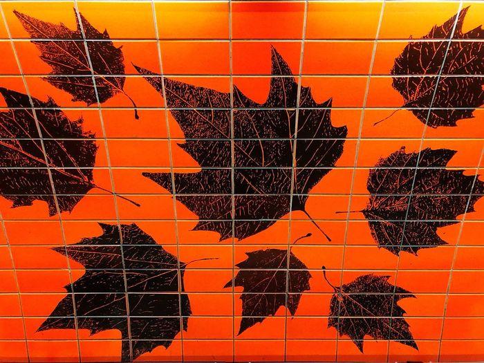leaves on