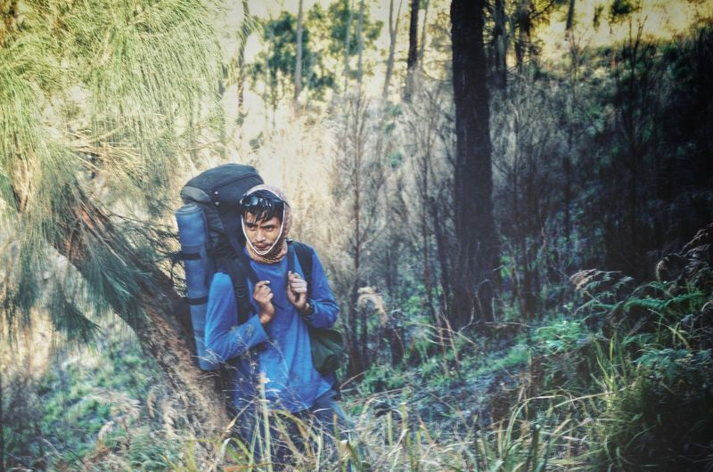 MOUNT RINJANI, LOMBOK INDONESIA. SEPT 16th 2017- Unidentified hikers start their journey to hike Mount Rinjani from sembalun route. INDONESIA Mount Rinjani Sembalun Route Hiking Hikingadventures Rest Wallpaper Background ASIA Tree Forest Full Length Smiling Grass Trail Hiker Hiking Pole Airways Backpack Mask - Disguise Mask Explorer Mountain Climbing