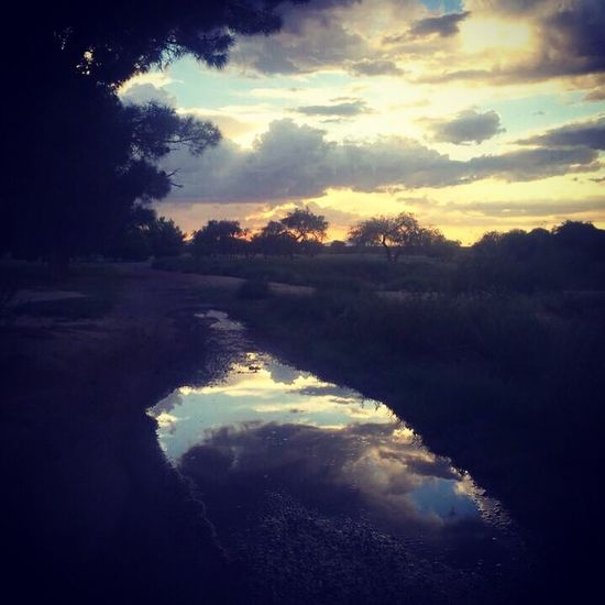 A monsoon season sunset in Safford, Arizona. Safford Clouds And Sky Colors Skies Arizona Nature Photography Beauty In Nature Arizona Sky Monsoonseason Sky Light Sunset Landscape_photography Nature Clouds Beauty Trees And Sky Reflection Water Reflections