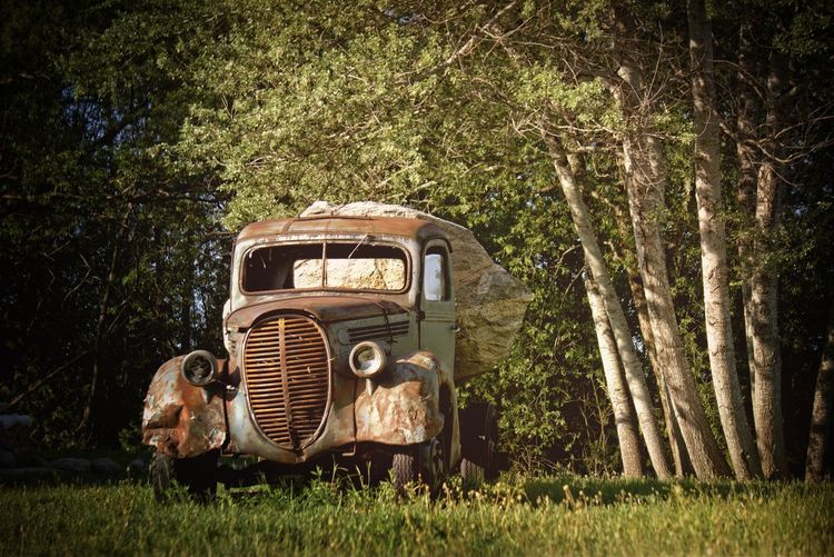 Abandoned truck on grassy field