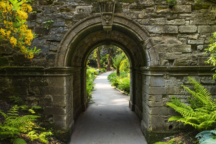 Archway in Hever Gardens, Hever Castle & Gardens, Hever, Edenbridge, Kent, England, United Kingdom Arch Architecture Built Structure Day Growth Nature No People Outdoors Plant The Way Forward Tree Tunnel