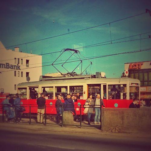 Woman's Day Tram, Gdansk, Poland Fotomagik Fotoremik Gdansk Igersgdansk Ilovegdn Ilovetrojmiasto My3miasto Mycity Tricity Trojmiasto 3city 3miasto Zkmgdansk Gdansk_official Tramwaj Tram