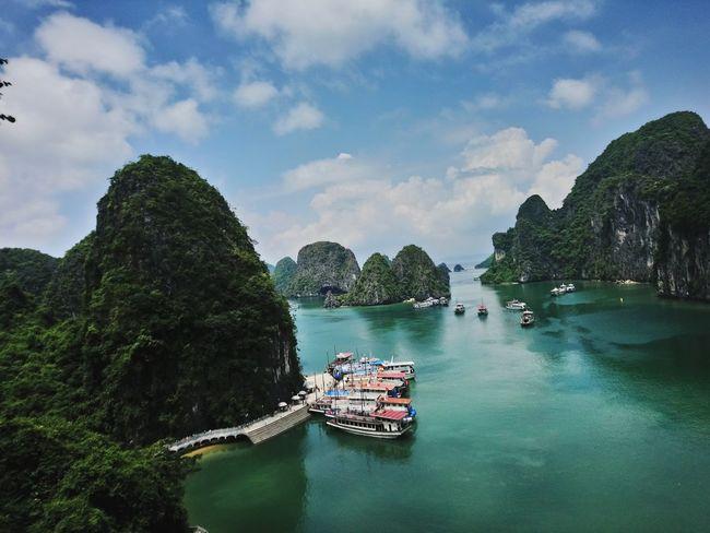 ha long Ha Long Tree Water Nautical Vessel Sea Sky Boat Water Vehicle Mountain Rocky Mountains Scenics
