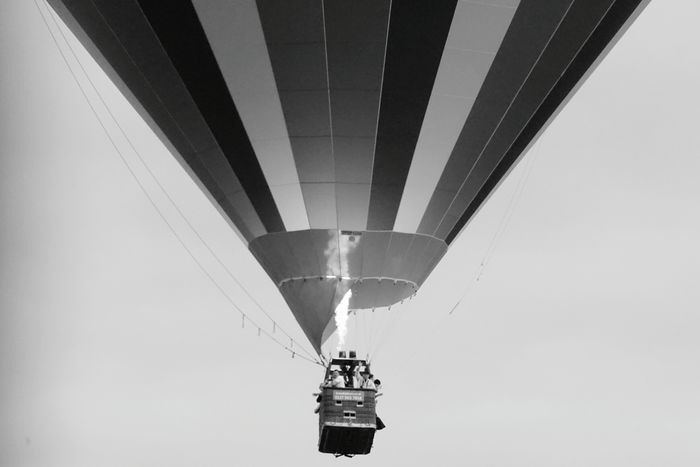 Bristol Balloon Festival  EyeEmBristol Stripes Hot Air Balloon Transportation Flame Adventure People Ballooning Festival Sky Multi Colored Flying Outdoors Day Joy Rainbow Basket Waving Holiday Balloon Blackandwhite Step It Up Low Angle View Clear Sky Nature Real People Go Higher The Traveler - 2018 EyeEm Awards The Great Outdoors - 2018 EyeEm Awards The Photojournalist - 2018 EyeEm Awards Be Brave A New Beginning