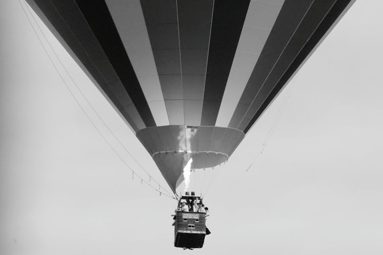 Bristol Balloon Festival  EyeEmBristol Stripes Hot Air Balloon Transportation Flame Adventure People Ballooning Festival Sky Multi Colored Flying Outdoors Day Joy Rainbow Basket Waving Holiday Balloon Blackandwhite Step It Up Low Angle View Clear Sky Nature Real People Go Higher The Traveler - 2018 EyeEm Awards The Great Outdoors - 2018 EyeEm Awards The Photojournalist - 2018 EyeEm Awards Be Brave A New Beginning Human Connection Moments Of Happiness