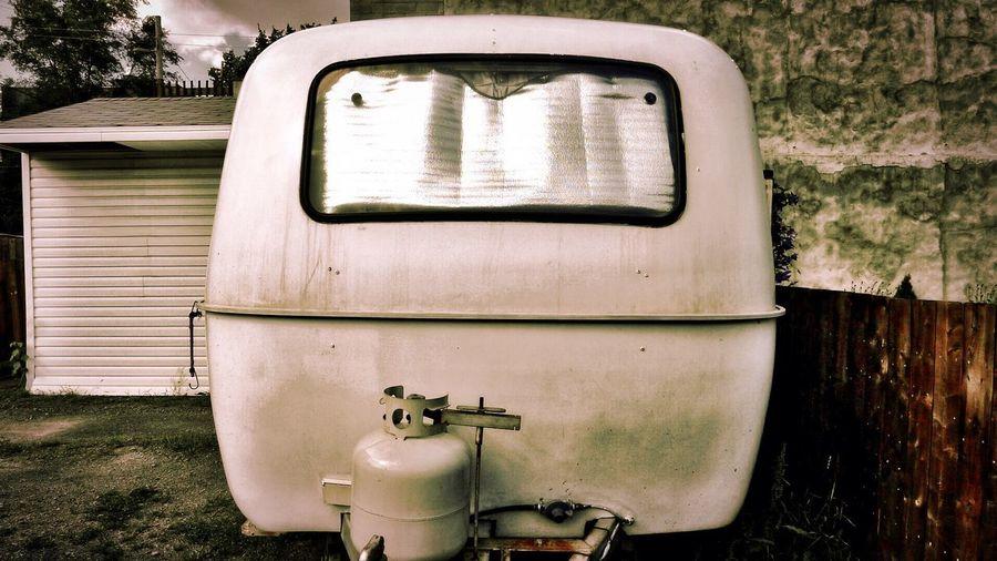 Close-up of vintage car on tree