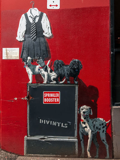 Street Art dedicated to Chrissy Amphlett. Melbourne Australia Art And Craft Canine Communication Creativity Day Dog Domestic Domestic Animals Human Representation Mammal No People One Animal Red Representation Text Wall - Building Feature Western Script Adventures In The City