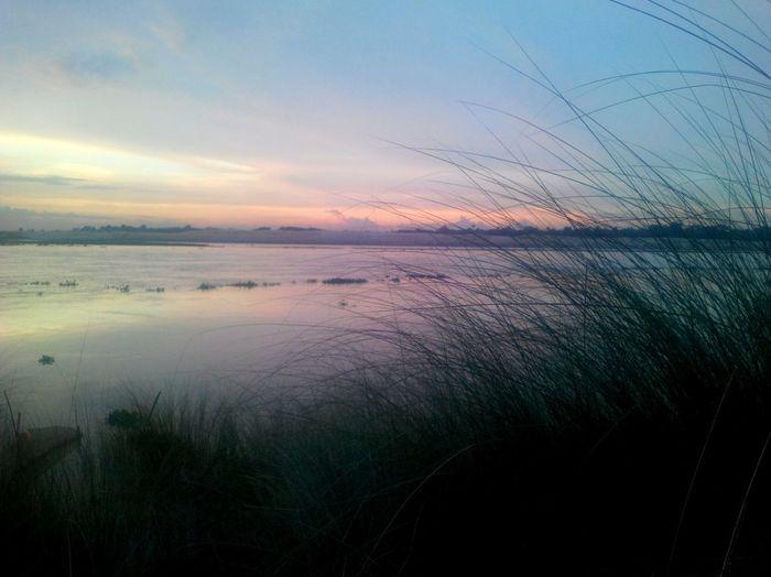 Laandscape Gorai River Riverside Sunset