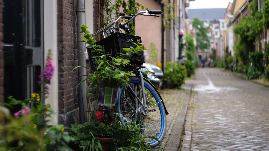 Architecture Bicycle Building Exterior Built Structure Day Green Land Vehicle Live For The Story Mode Of Transport Nature Netherlands No People Old Outdoors Plant Spring Stationary Summer Tire Transportation Urban Nature Vintage Wheel Connected By Travel Summer Exploratorium