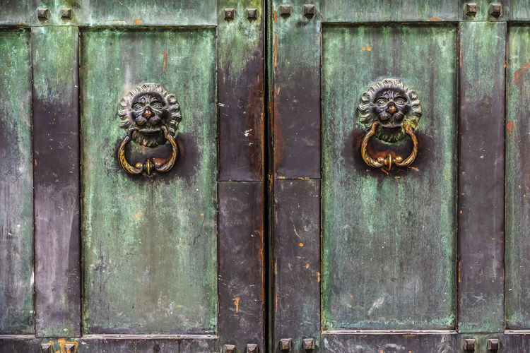 Kungsträdgården, Stockholm Stockholm Sweden The Graphic City Close-up Closed Day Door Door Handle Door Knocker Entrance Latch Lion - Feline Metal No People Old-fashioned Outdoors Protection Safety Security Wood - Material