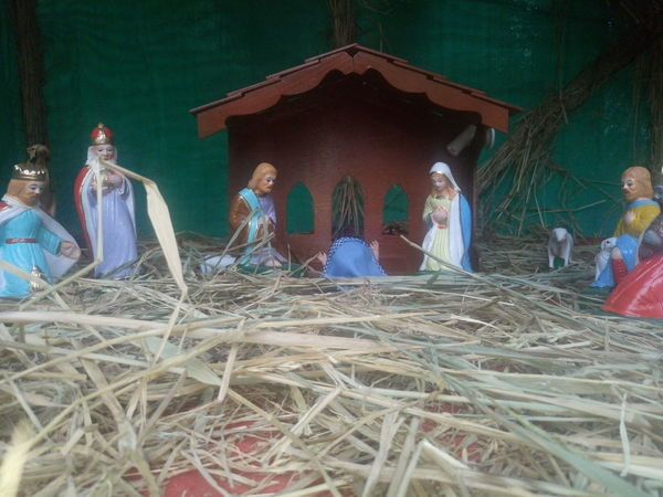 Christmas Collection Crib Day Hay Haystack Mammal Merry Christmas Merry Christmas Eve! Merry Christmas! Nativity Church Nativity Figurine Nativity Scene No People Outdoors Traveling Home For The Holidays