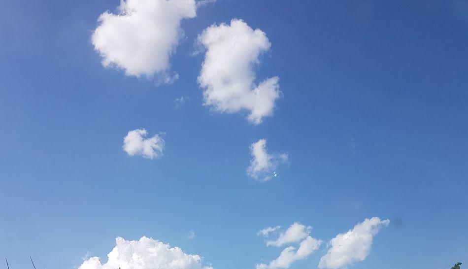 Himmel Blue Sky Only Backgrounds Wind Sky Cloud - Sky