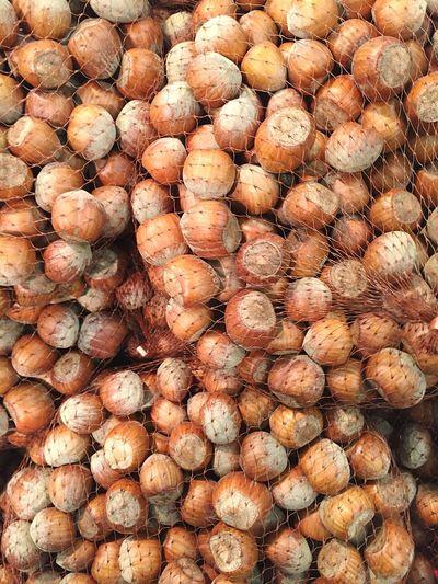 Full frame shot of hazelnuts in net