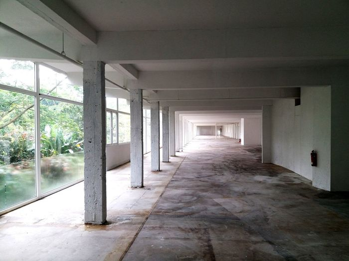 empty interior space with pillars Perspectives And Dimensions Perspective Perspective Lines Pillars Pillars Of Light Empty Space Empty Hallway Greenery View Architecture Indoors  Built Structure Corridor No People Domestic Room Day