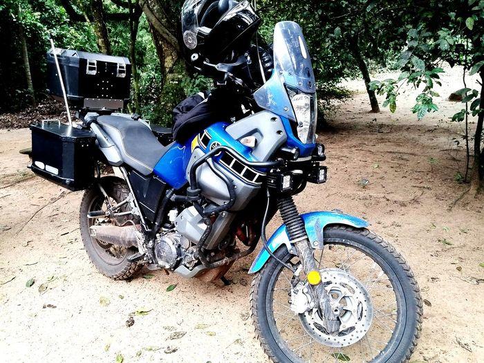 Yamaha tenere 660 Yamaha First Eyeem Photo