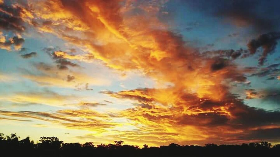 Red sky at night. central west New South Wales Australia. A beautiful sunset. Relaxing Sunset Australia Bush Australian Landscape Australian Outback Taking Photos Red Sunset Australian NSW Australia