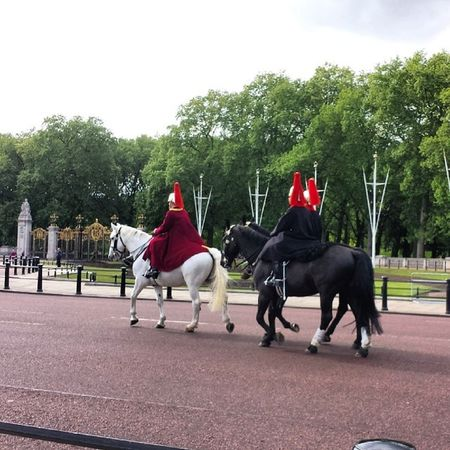Buckinghampalace London Lovelyday Guards