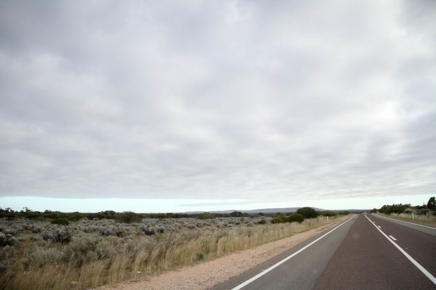 Nullarbor Plain Nullarbor Nullarbor Plain Transportation The Way Forward Nature Landscape Tranquility Tranquil Scene No People Non-urban Scene Land Day Beauty In Nature Scenics - Nature