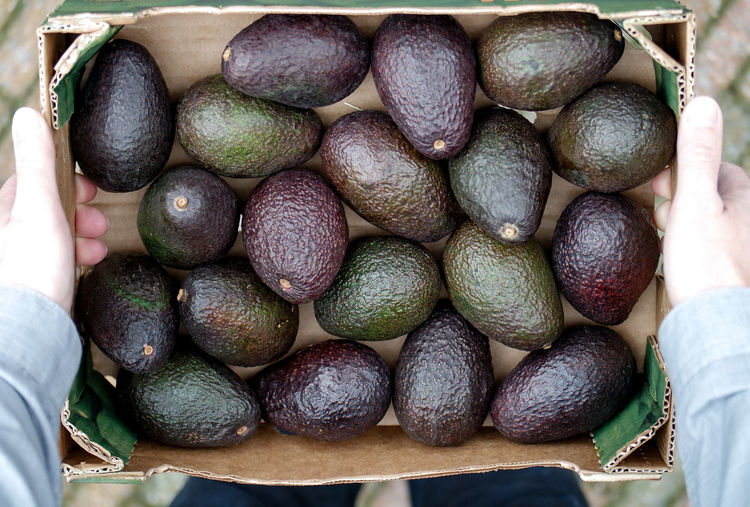 Avocado Avocados Close-up Day Food Food And Drink Fresh Produce Freshness From The Market Fruit Healthy Healthy Eating High Angle View Market No People Outdoors