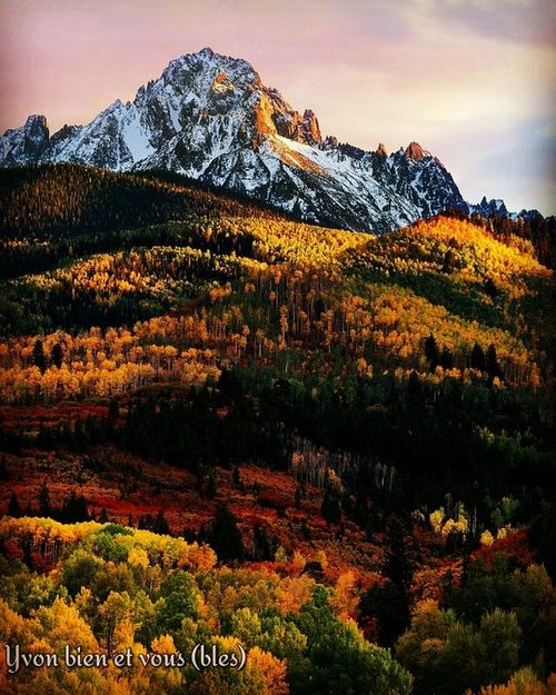 wouaw Yvonbien South Africa Automne Colors Voyage Trip View Vacations Snow Mountain Mountain Peak Mountain Range Landscape Tree Wilderness Nature Scenics Outdoors Travel Destinations Beauty In Nature Snowcapped Mountain Forest Plant