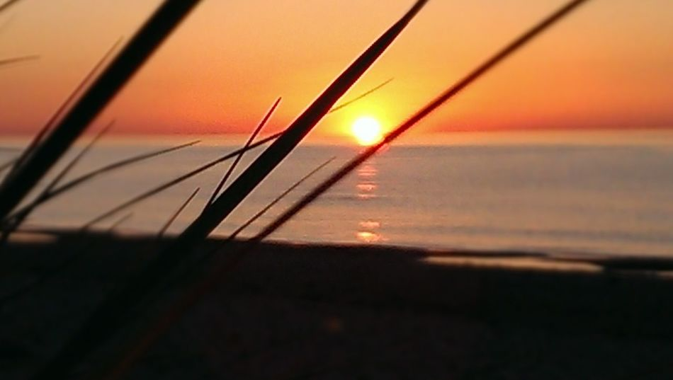 Sommer Sonne Sonnenschein ❤ Sunset Sea Water Sun Orange Color Nature Tranquility No People Horizon Over Water Beauty In Nature Sky Beach Outdoors Close-up