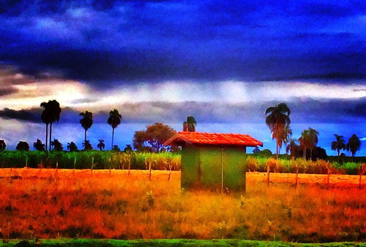 AVARÉ SP BRASIL ☀️ 🐎 🇧🇷 EyeEm All_shots #Portrait #Vscocamphotos #Likesforlikes #Photographs #Photographylovers #TopLikeTags #Outdoorphotography #Likesreturned #Silhouette #Likeforlike #Art #Contrast #Landscaped #TagStaGram #love #friends #tagstagram #photooftheday #selfie #amazing #f EyeEm Gallery Sunset #sun #clouds #skylovers #sky #nature #beautifulinnature #naturalbeauty #photography #landscape EyeEmBestPics EyeEm Best Shots HDR #smallhotels #wonderful_places #luxuryworldtraveler #instatravel #travelphotos #instagood #bestplacestogo #photooftheday #bestoftheday #instadaily #instafamous #luxwtprime #latergram #travelgram #passportready #bbctravel #lonelyplanet #beautifuldestinatio EyeEm Nature Lover EyeEmBestEdits