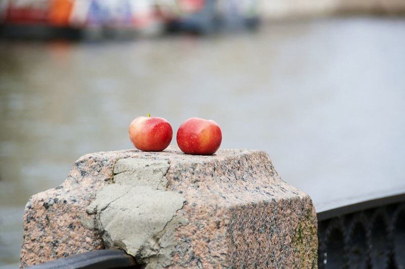 Close-Up Of Red Fruit On A Stone Post