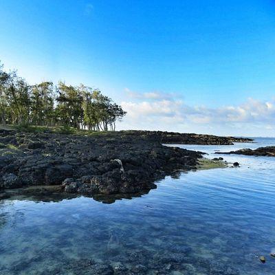 Un coin paisible pour papoter #ilemaurice #mauritius Nature Landscape Mauritius Worldingram Ilovethisplace Ilemaurice Igersmauritius World_specialist Globe_travel