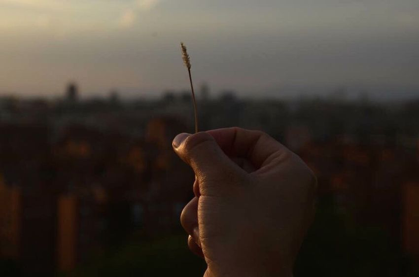 Focus On Foreground Sky Close-up Sunset Human Body Part Human Hand Tranquil Scene Madrid