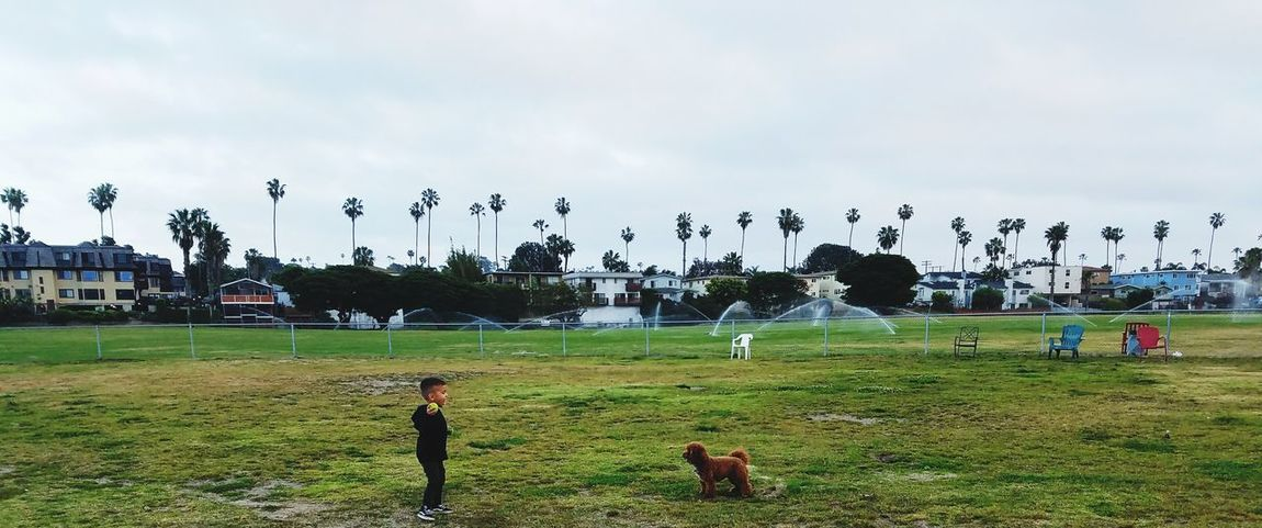Boy And Dog Boy Throwing Ball California Park Sport Sky Nature Pets Dogs Atmospheric Scene Beauty In Nature Dog Love Storm Cloud