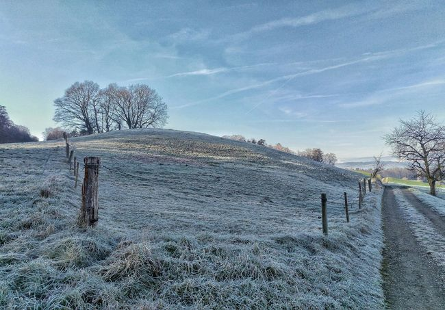 Landscape Hoarfrost Whitefrost Fence Trees Blue Sky Morning