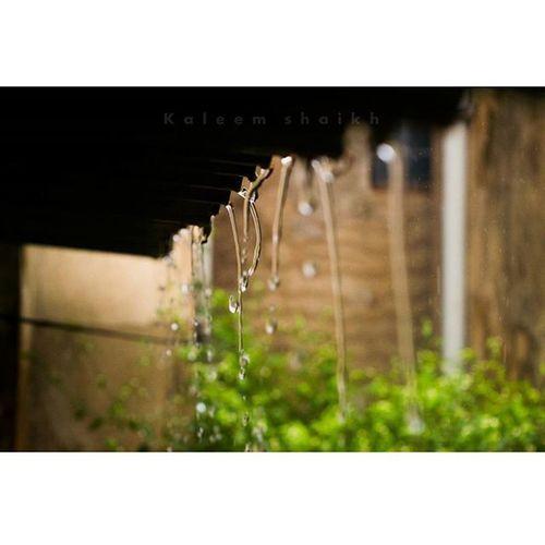 Sudden rain in belgaum!!!! ❤❤😍😍 Sudden Rain Drops Raindrops Love Belgaum  Instagram Inatagramhub Instagood Instacool Instamood Picoftheday Photooftheday Drop_perfection Macro_brilliance Nature_brilliance CNN @cnn Belgavi Allaboutbelgaum Myblr