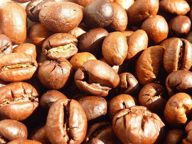 coffee cherry,coffee,Peaberry,caracoli Coffee Abundance Aleq Backgrounds Brown Caracoli Close-up Coffee Cherry Food Food And Drink For Sale Freshness Full Frame Healthy Eating High Angle View Indoors  Large Group Of Objects No People Nut Nut - Food Peaberry Retail  Selective Focus Still Life Wellbeing