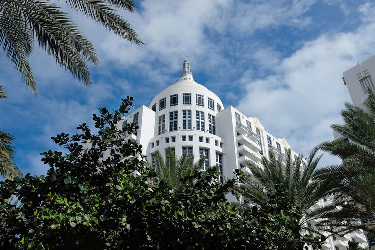 Famous Loews Miami Beach Hotel with palm trees on South Beach Architecture Loews Hotel Architecture Art Deco Art Deco Architecture Art Deco Hotel Art Deco Style Building Exterior Built Structure Classic Design Cloud - Sky Day Growth Low Angle View Nature No People Outdoors Palm Tree Sky Tree