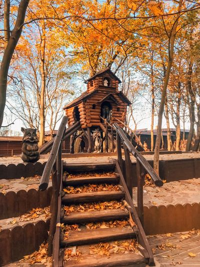 Staircase Tree Architecture Railing Nature Steps And Staircases Sunlight Built Structure Outdoors Autumn Land No People The Way Forward Direction Plant Orange Color Low Angle View Metal Day