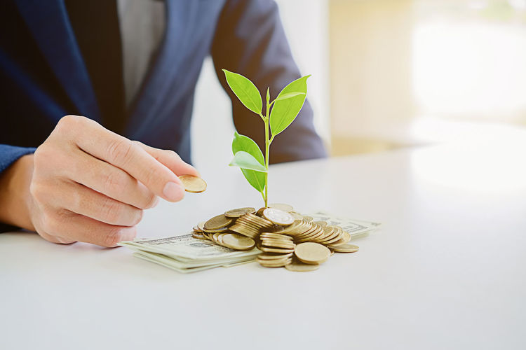 Cropped image of businessman putting coin by plant on table