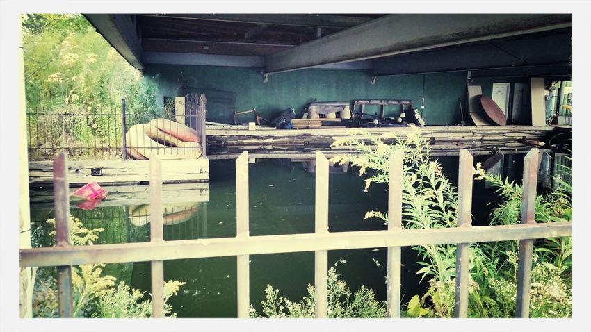 Abandoned Buildings Walking Around