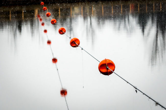 Strings Healey's Falls Buoys Cable Dam Floats Flower Hanging Nature Outdoors Red, Lines, Reflections, River Safety Water