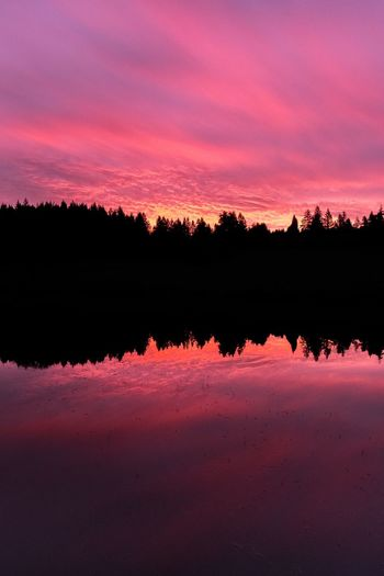 Perfect reflection Nature Beauty In Nature Sunset Scenics Tranquility Tranquil Scene No People Silhouette Sky Lake Outdoors Water Tree Day
