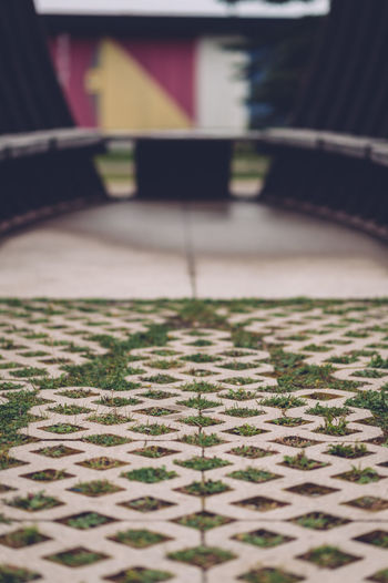 Architecture Building Built Structure City Close-up Day Flooring Footpath Grass Nature No People Outdoors Pattern Selective Focus Surface Level Tiled Floor Tiles Transportation