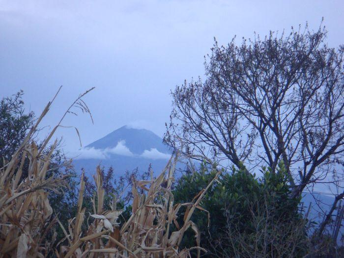 #puebla #pueblomagico #naturaleza Tree Mountain Sky Active Volcano Volcano Bare Tree