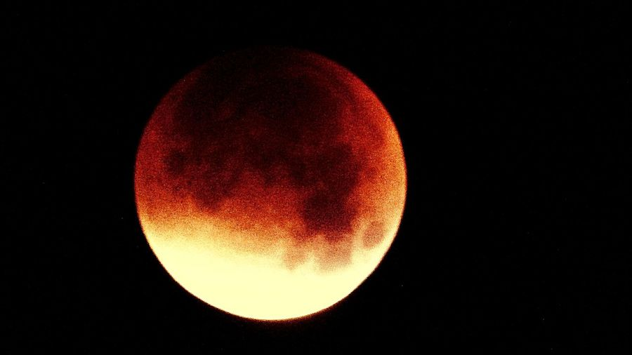 From my window at 03h40 am in Portugal the Eclipse the Blood Moon Blood Red Moon Bloodmoon Bloodmoon15 Bloody Moon Eclipse Bloody Moon...bloody Camera Eye4photography  EyeEm Nature Lover Full Moon Havest Moon, Luna Eclipse, Blood Red Moon Moon Super Blood Moon Lunar Eclipse The Blood Moon