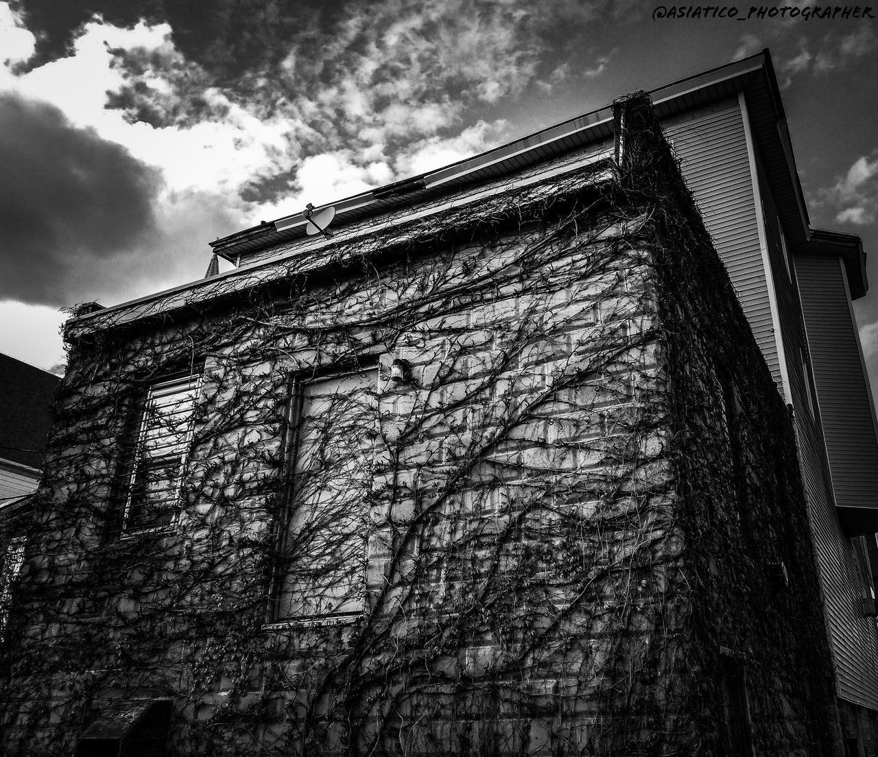 architecture, low angle view, built structure, sky, building exterior, building, cloud - sky, tree, nature, no people, plant, house, day, old, outdoors, bare tree, history, window, the past, residential district